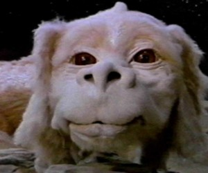 THURSDAY - Flicks From The Hill Join AVAM for The Neverending Story as their Flicks from the Hill series continues Where: AVAM Click for Details